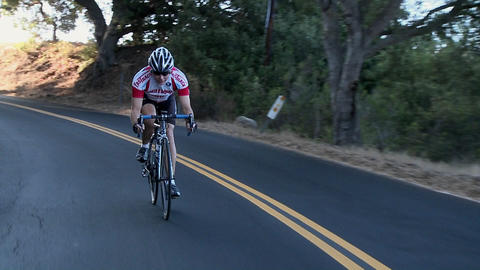 A cyclist on a rural tree lined road Stock Video Footage