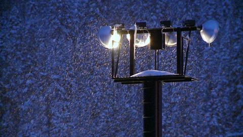 Snow falls at night through beaming flood-lights Stock Video Footage
