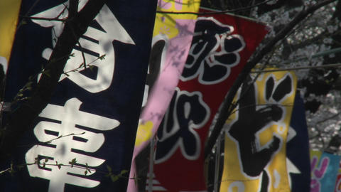 Colorful banners in Ueno Park during the cherry blossom... Stock Video Footage