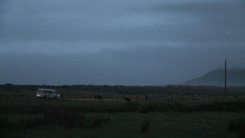 A van drives through Buchepureo, Chile, a tranquil... Stock Video Footage