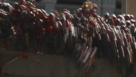 Red grapes tumble off the end of a conveyor belt at a... Stock Video Footage
