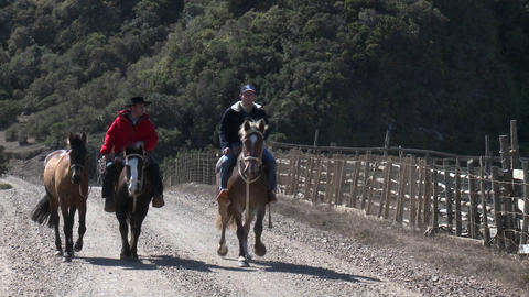Chilean cowboys on the road near Buchupureo, Chile Stock Video Footage