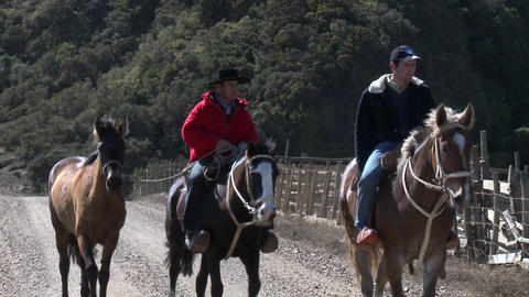 Chilean cowboys on the road near Buchupureo, Chile Footage