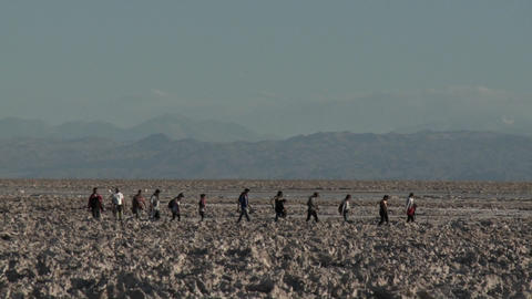 Tourists at the Laguna Chaxa at the Salar de Atacama in... Stock Video Footage