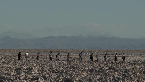 Tourists at the Laguna Chaxa at the Salar de Atacama in... Stock Video Footage