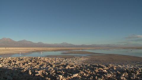 Pan across the mineral formations and flamingo habitat at the Laguna Chaxa at the Salar de Atacama i Footage