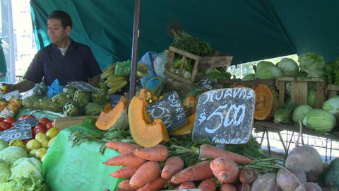 Produce for sale in a farmer's market in Santiago, Chile Footage
