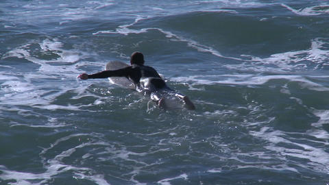 Surfers waiting for waves at Pismo Beach, California Footage