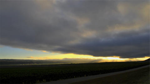 Time lapse of cloudy sunset over a vineyard Footage