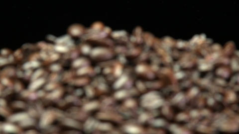 Rack focus of roasted coffee beans in a pile Stock Video Footage