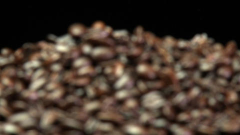 A rack focus of a pile of roasted coffee beans Stock Video Footage