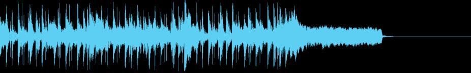 Reggae Groove 15 Sec Music