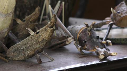 Craft beetle boar Live Action