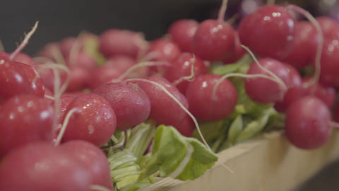 Close-up of delicious vegan red radish on grocery shelf. Tasty vegetarian food Live Action