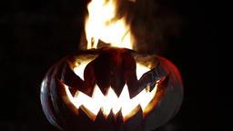 Burning pumpkin on Halloween. Looped Footage