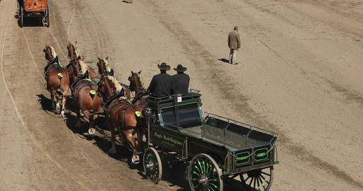 Beautiful Draft horses and wagons enter judge DCI 4K 594 Footage