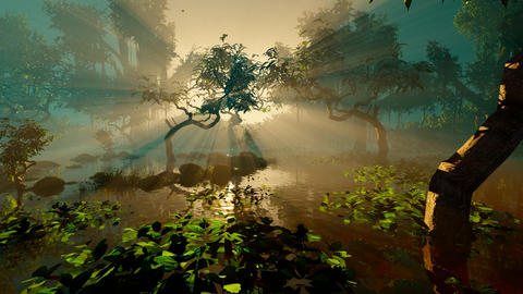 Jungle sunset Animation