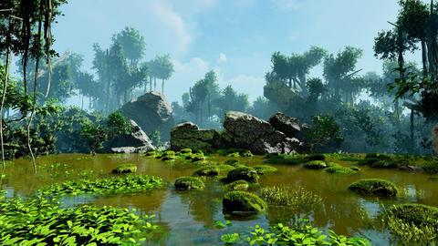 Tropical swamp Animation