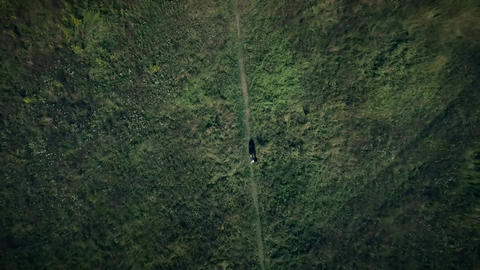 Aerial Shot of Girl Lost Alone in the Field Live Action