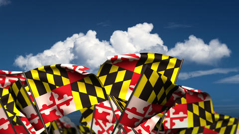 Waving Maryland State Flags Animation