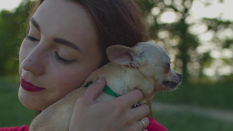 Pretty woman petting her chihuahua dog outdoors Live Action