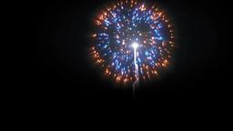 Holiday fireworks display against black Animation