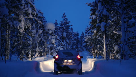 Night Snowfall in the Winter Forest and a Car with Headlights Footage