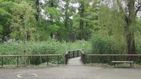 Rainy season sarue park082 Live Action