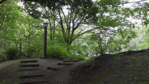 Rainy season sarue park099 Live Action