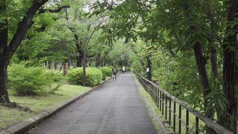 Rainy season sarue park123 Live Action