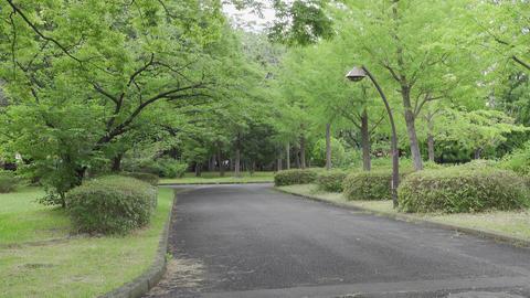 Rainy season sarue park139 Live Action