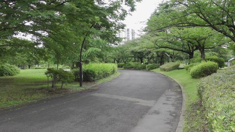 Rainy season sarue park141 Live Action