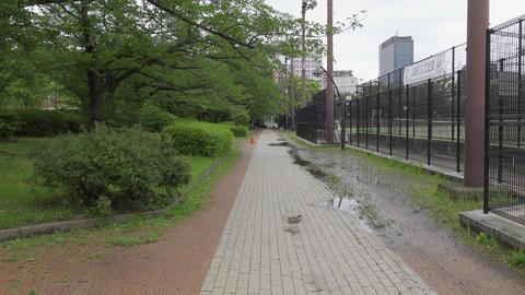 Rainy season sarue park151 Live Action