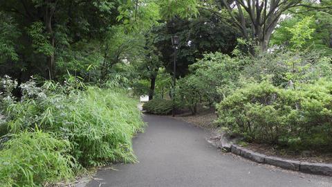 Rainy season sarue park008 Live Action