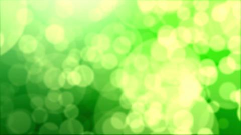 Green abstract motion background, drifting bokeh CG動画