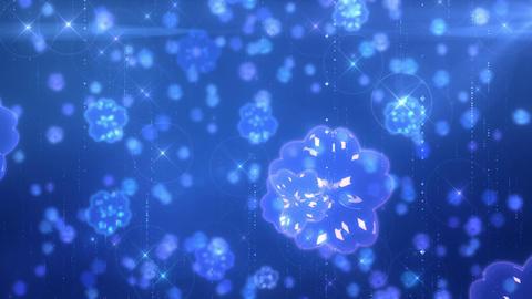 SHA Flower Image BG Blue Animation
