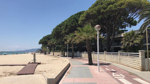 Cambrils, Spain, A palm tree on a sidewalk Live Action