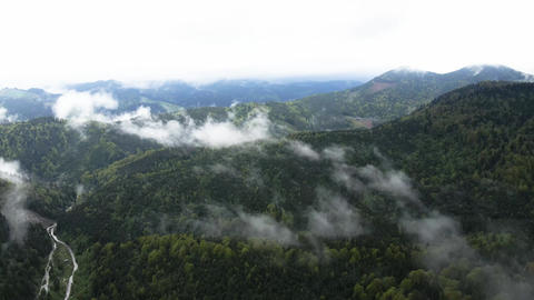 Ukraine, Carpathian Mountains: Beautiful mountain forest landscape. Aerial Live Action
