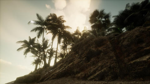 Soft twilight of the amazing tropical marine beach Live Action