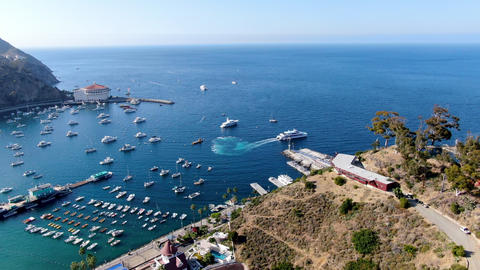 Aerial view of Avalon harbor and Catalina Express Terminal in Santa Catalina Live Action