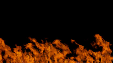 Burning fire on black background Acción en vivo