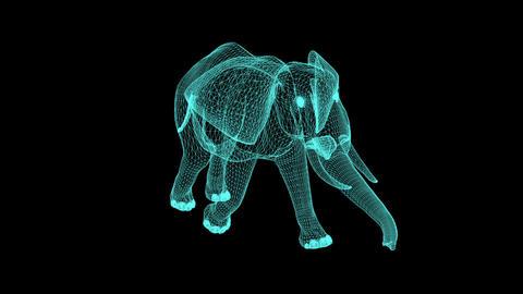 Wireframe Elephant Walking Across The Frame On black Screen Animation