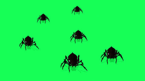 SAnimation Of Spiders On Green Screen Creepy Crawlingpider 6 Animation