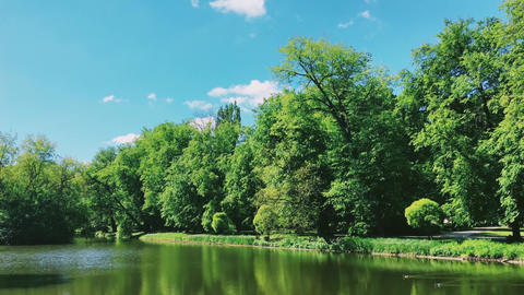 Lake view, green trees and blue sky as nature, landscape and natural environment Live Action