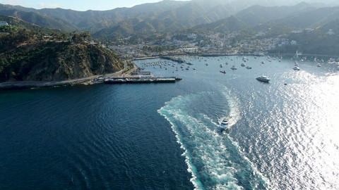 Aerial view of Avalon Downtown and harbor in Santa Catalina Island, USA Live Action