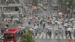 Above view of crowded Shibuya scramble crossing on a rainy day, Tokyo, Japan Footage