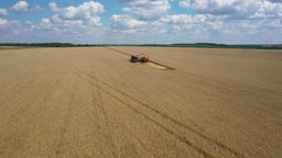 quadcopter span over the wheat field where the combine unloads grain into the truck body Live Action