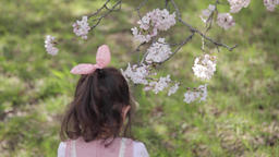 Portrait of young Japanese girl playing with cherry blossoms in a city park Footage