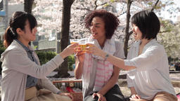 Multi-ethnic young women toasting during hanami party in Tokyo Footage