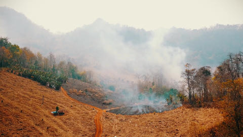 Burning crop on countryside . Slash and burn agriculture crisis. Toxic haze from Live Action